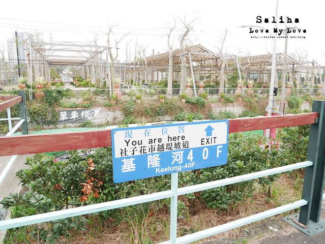 社子島溼地水鳥自行車道 (5)