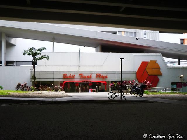 Bukit Timah Plaza 03