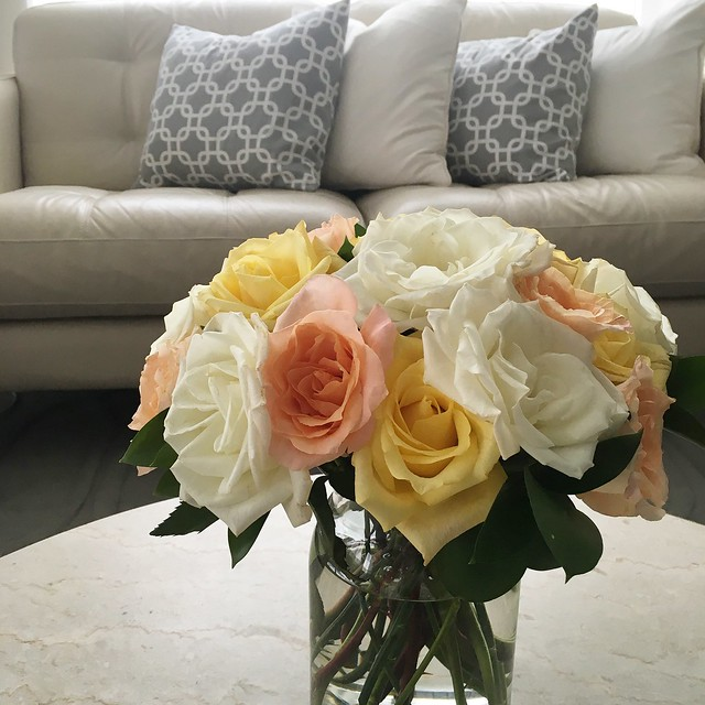 Rainforest Alliance roses from Costco
