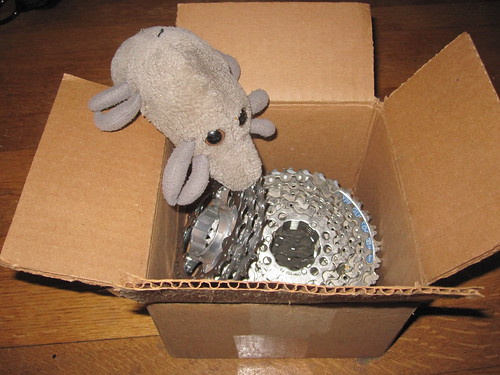 Dust Mite examines a box of worn-out cassettes