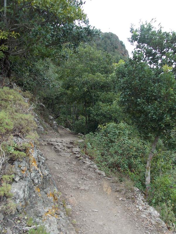Anaga Hiking (92)