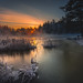 Beauty of Winter by Jyrki Salmi