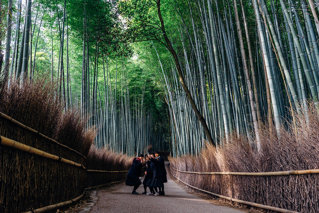 kyoto_arashimaya_06