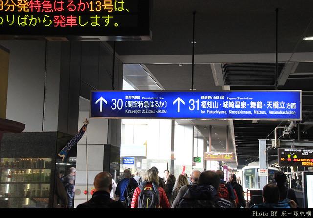 保津霞小火車06