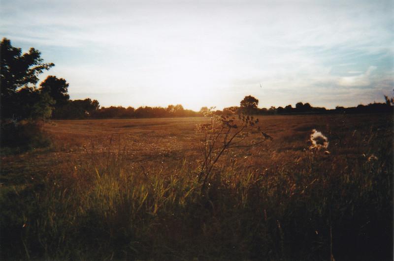 Analog Sonnenuntergang Sommer