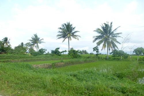 P16-Luzon-Tabuk-Tinglayen-route (3)