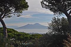 Napoli, parco Virgiliano - Vesuvio