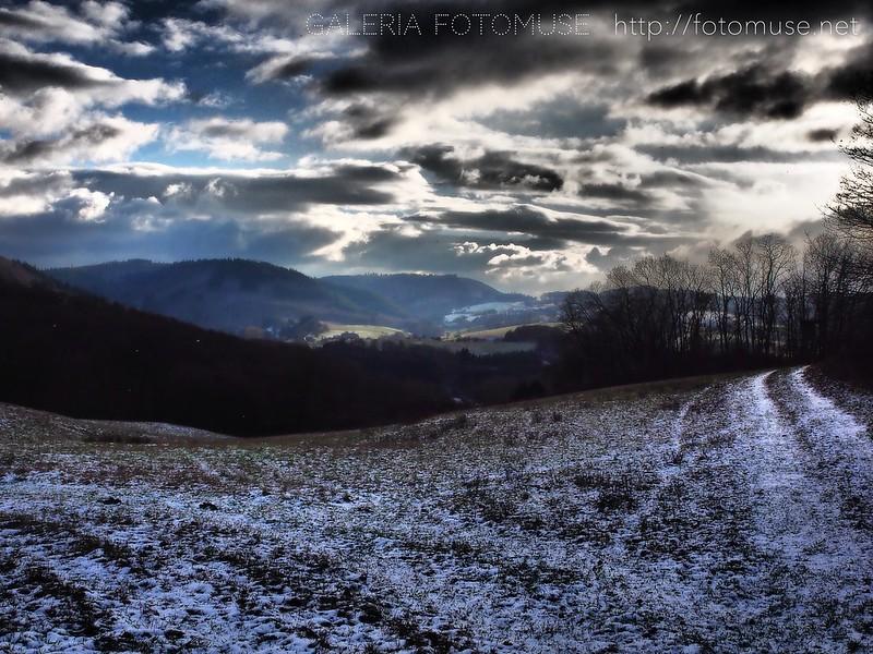 January Landscape