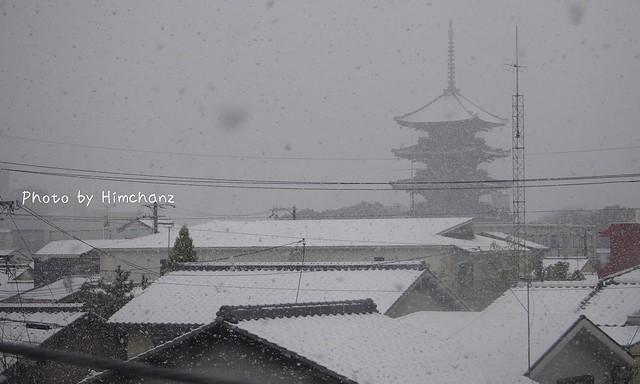 東寺時点では吹雪いていたのですが。。