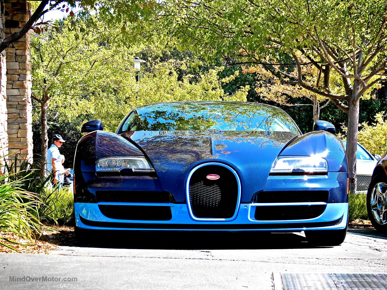 Bugatti Veyron Grand Sport Vitesse Blue Carbon 2