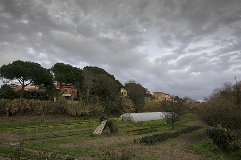 Caffarella - Roma