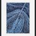 Fishing net by marschp