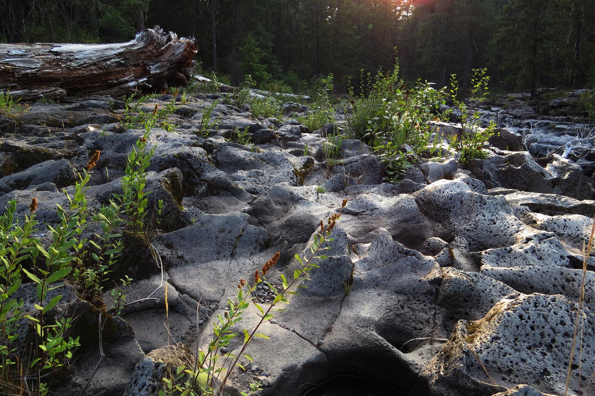 Rogue River Gorge, Oregon