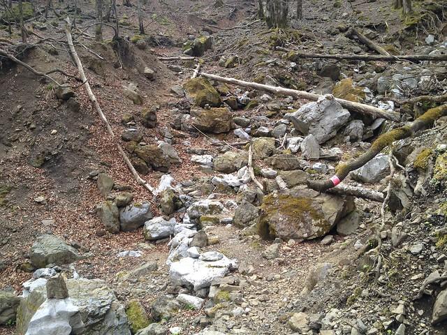 御池岳 コグルミ谷 登山道 渡渉ポイント