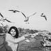 Seagulls candid by F. Ascatigno