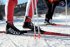 Kdo vyhrává testy lyží?