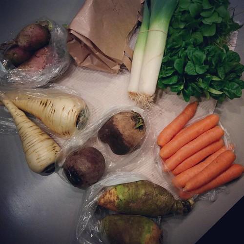 De verse groentjes van de #buurderij: pastinaak, koolraap, raapjes, rode biet, prei, postelein, veldsla, wortels en in het papieren zakje.. witloof 💕 #buurderijleuven #healthylife #healthyfood #healthyshopping #boodschappen