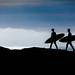 Surf Surf Surf. by Bizmax