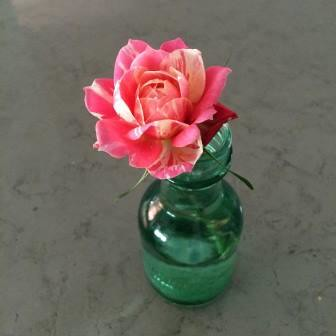 when to give flowers - because you grow them!