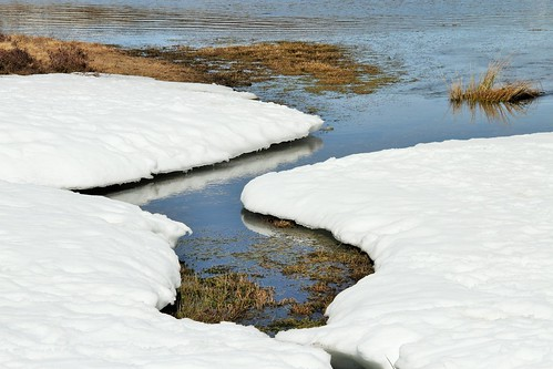 Detalle Laguna de los Peces