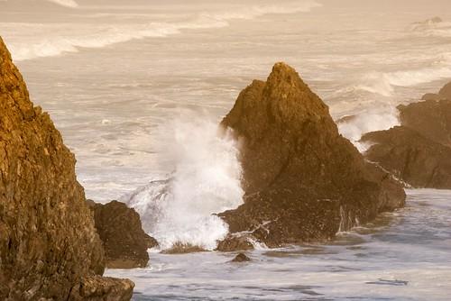 Surf on Seal Rocks