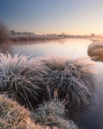 winter sunlight thames sunrise river landscape frozen nikon frost stu hard 45 lee d750 grasses filters grad 1635 meech lechlade 06nd