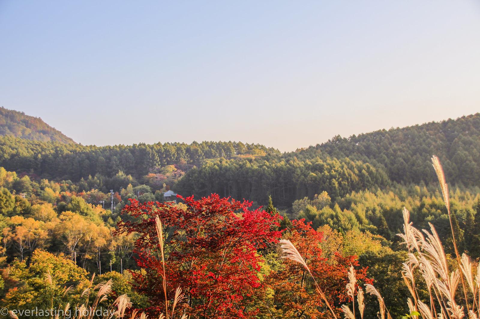 信州天空RESORT ARCADIA ~ふたつとない景色~ -0013