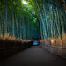 the path of bamboo, revisited #40 (Sagano, Kyoto) by Marser