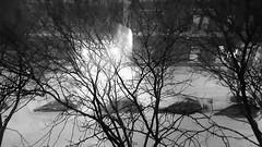 Snowmageddon Now