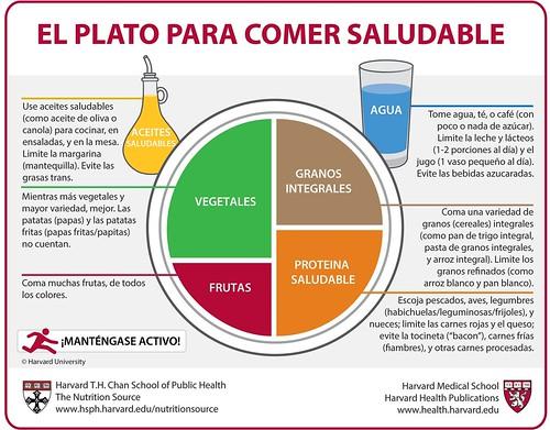 Dieta saludable diseñada por Harvard