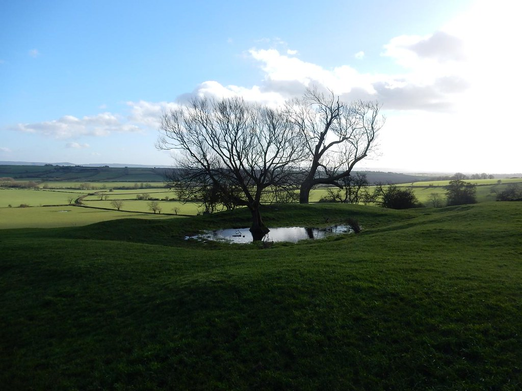 Trees pond and view Haddenham Circular (short)