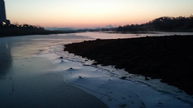 공릉천 관찰일기-청둥오리 자리 물은 얼지 않는다?