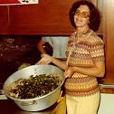 DES Scrapbook 1976 044-a