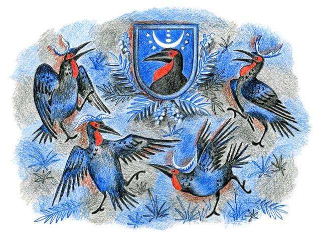 Dance of the Hornbills (2) / Танец рогатых воронов (2)