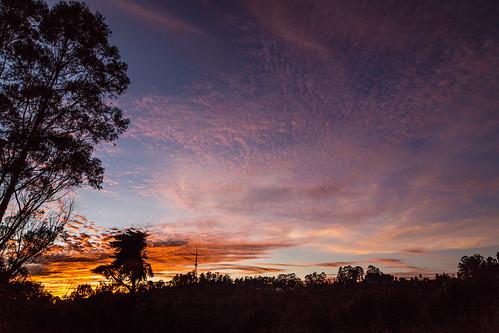 india colors silhouette sunrise dawn kodaikanal lobsterspring