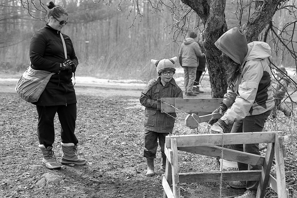 Buckhorn Maplefest at McLean Berry Farm
