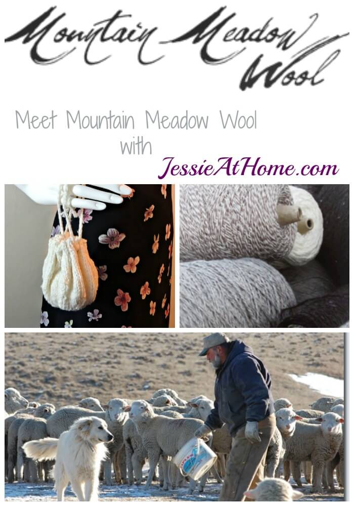 Meet Mountain Meadow Wool with Jessie At Home