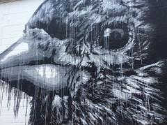 Photography Challenge with the kids: Murals