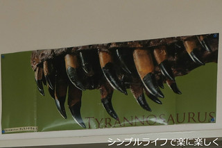 リビングカレンダー、ティラノサウルス