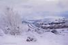 Snow Delay