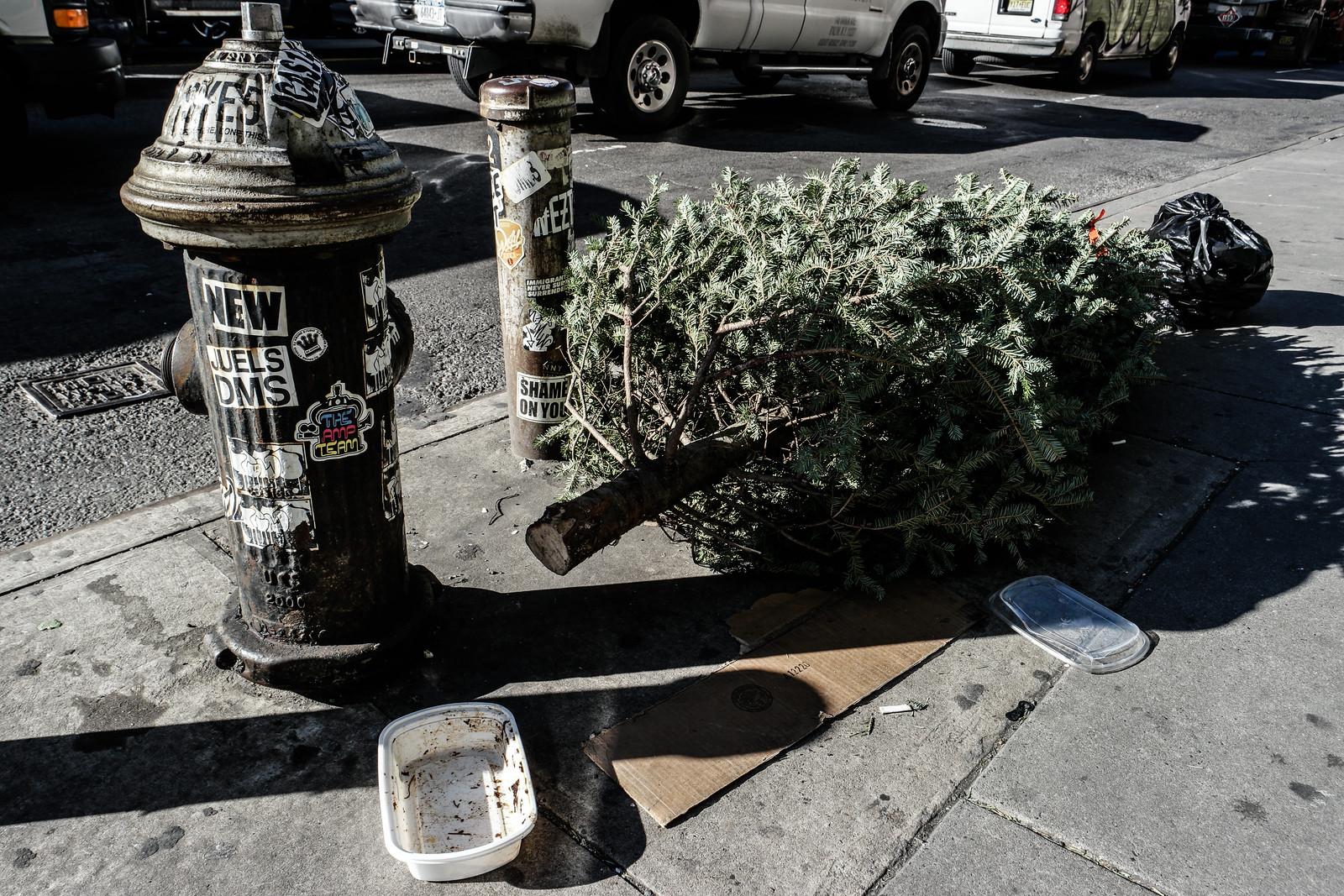 Christmas Trash