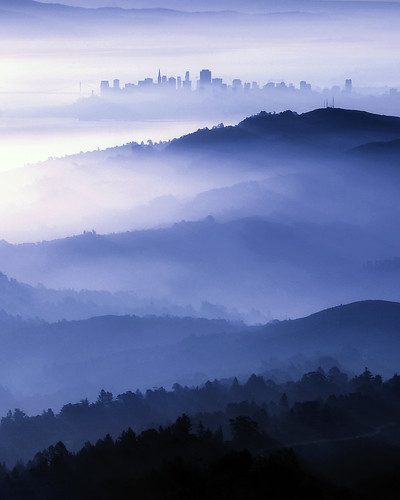 sf sanfrancisco city trees sky mist mountain mountains nature misty fog sunrise landscape outdoors foggy thecity bayarea mttam tamalpais mounttam mounttamalpais
