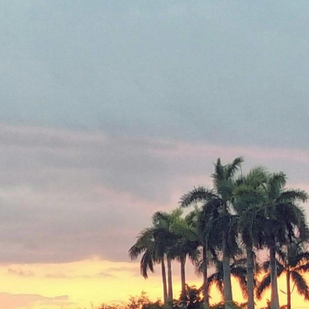 Fiery and pastel sky tonight. 💛 #miami #twilight #orisitdusk
