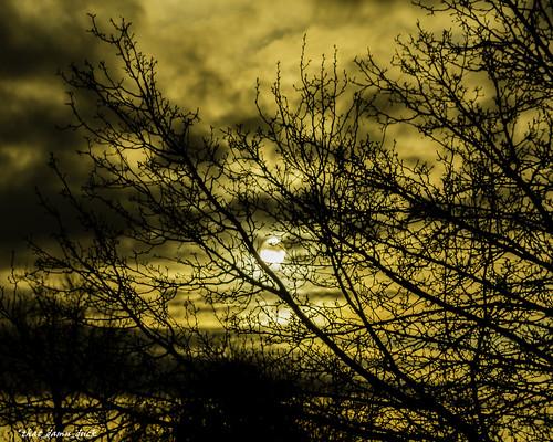 nature unitedstates sundown southcarolina