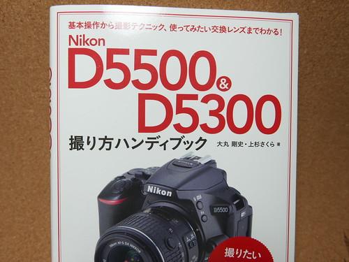 P1040972.JPG