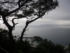 Algeciras through the mist