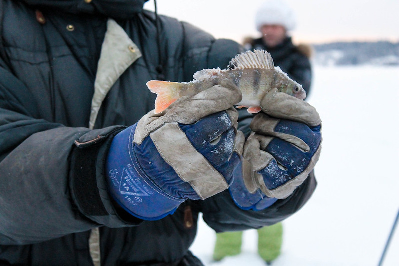 finland ice fishing