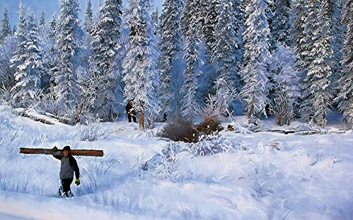 Logging in Winter - Alaska
