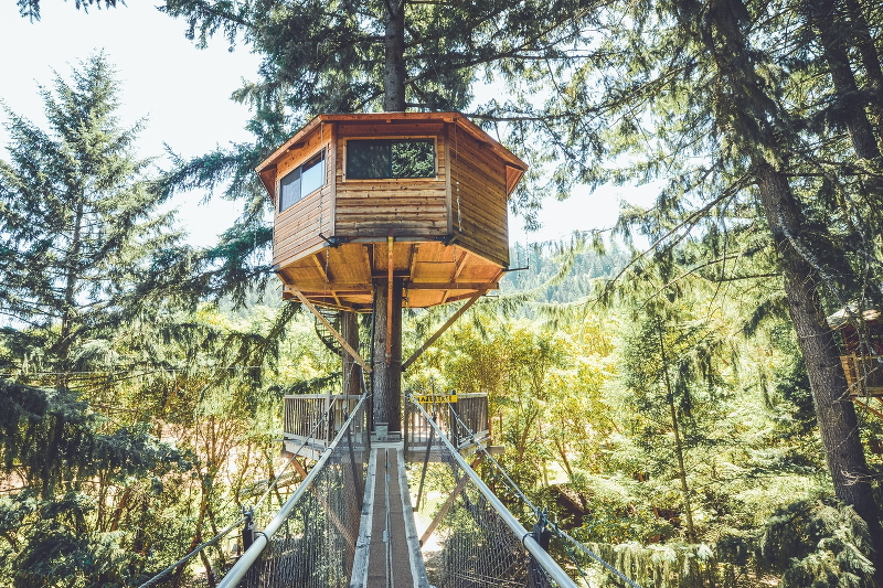 glamping-hub-tree-house