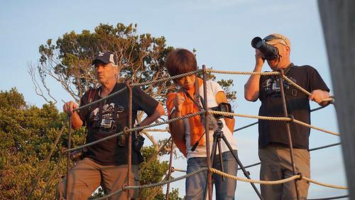 """映画『ビハインド・ザ・コーヴ ~捕鯨問題の謎に迫る~』より Behind """"THE COVE""""©2015YAGI Film Inc."""